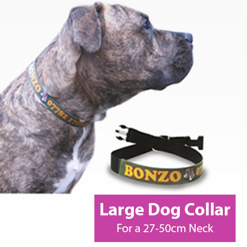Picture of Large Dog Collar
