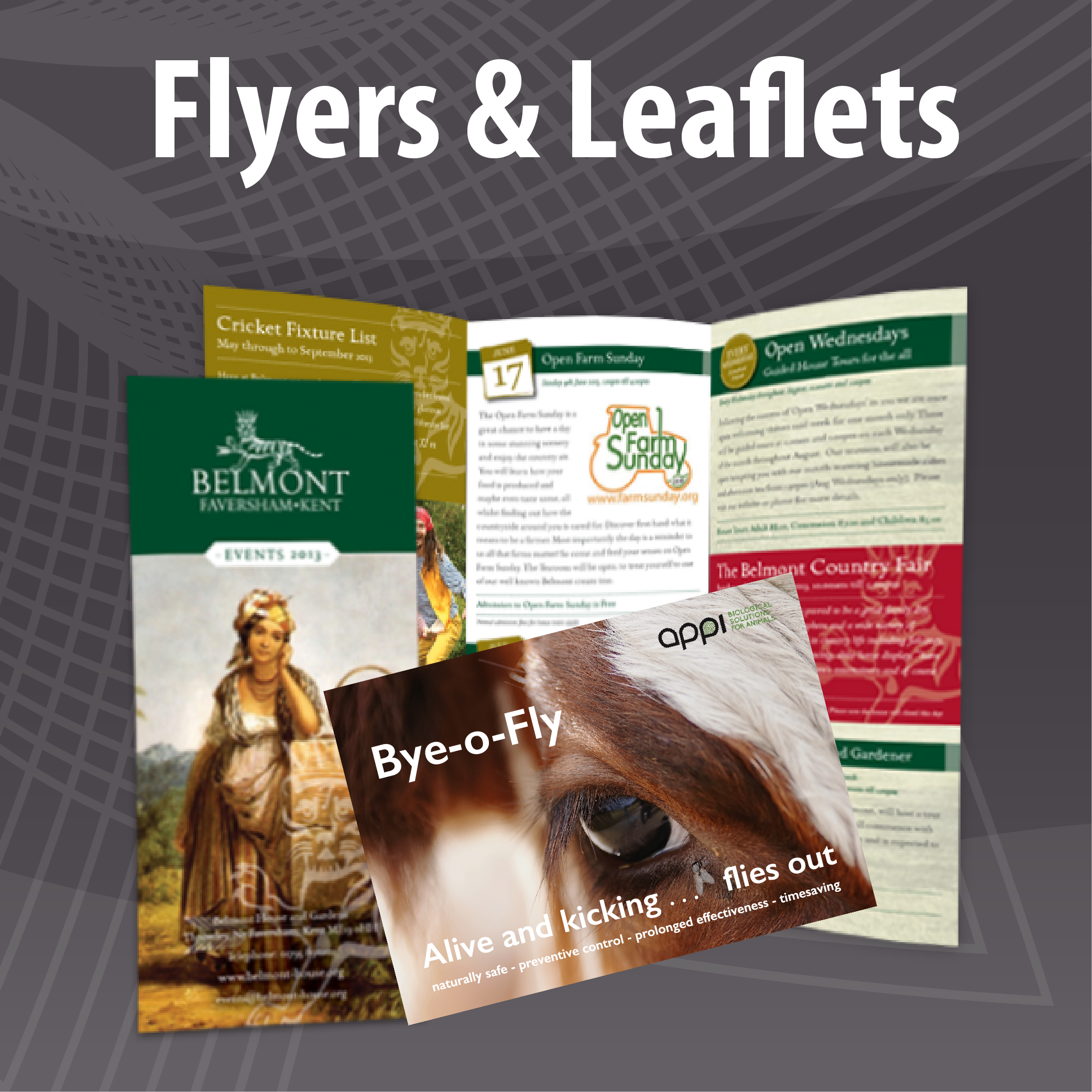 Low Cost Flyer and Leaflet Printing