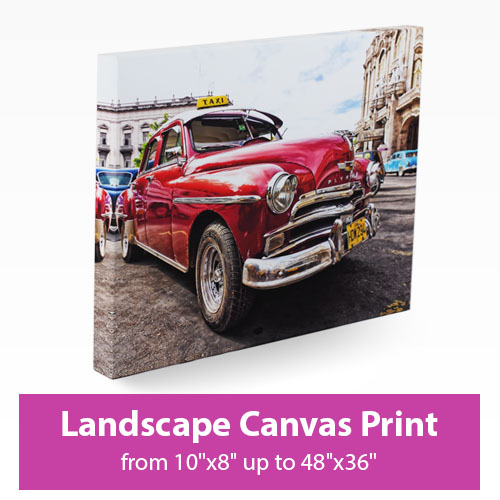 Picture of Landscape Canvas Print