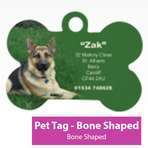 Picture of Pet Tag - Bone Shaped