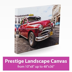 Picture of Prestige Landscape Canvas