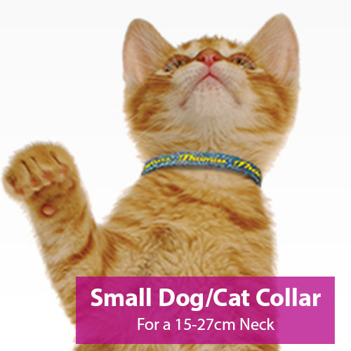 Picture of Small Dog/Cat Collar