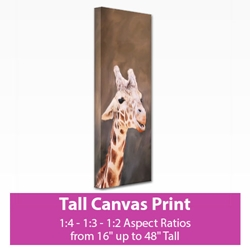 Picture of Tall Canvas Print